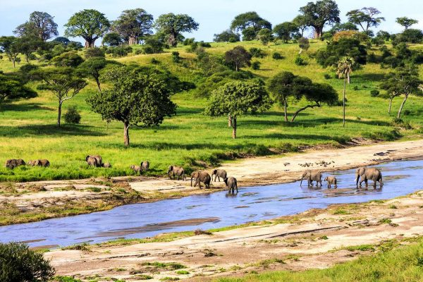 River at Samburu plans
