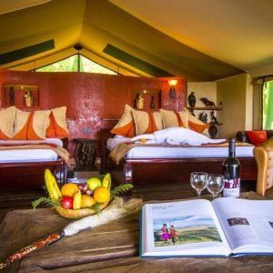 Safari camps
