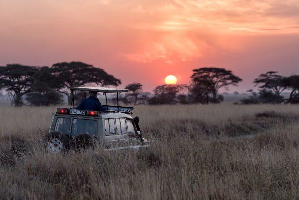 Sunset at the Mara Plains