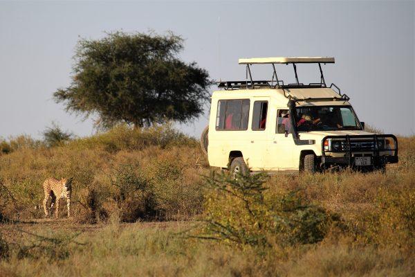 Amboseli Ride